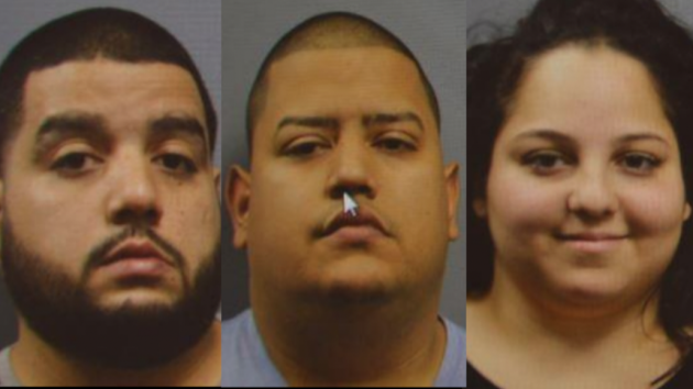 From left to right: Alexander Garcia, Luis Garcia-Balcalao and Ashley Rivera.
